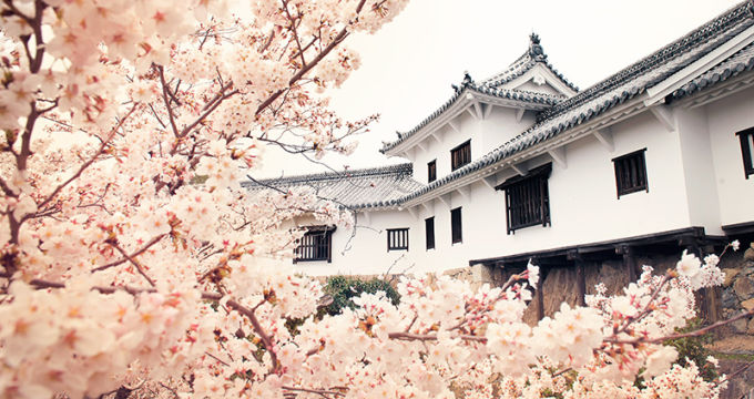 Himeji Castle reopening